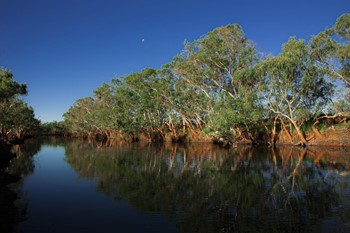 Picture: Murchison River